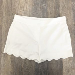LOFT Shorts - NWT LOFT Scallop Shorts